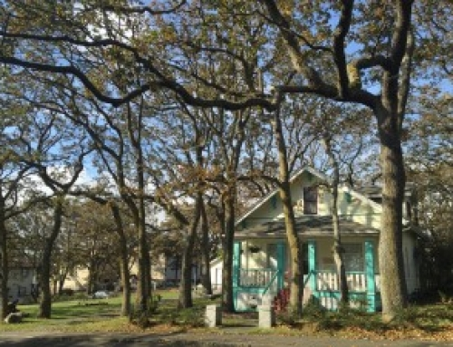 Notable Oaks of Oak Harbor Walking Tour April 21