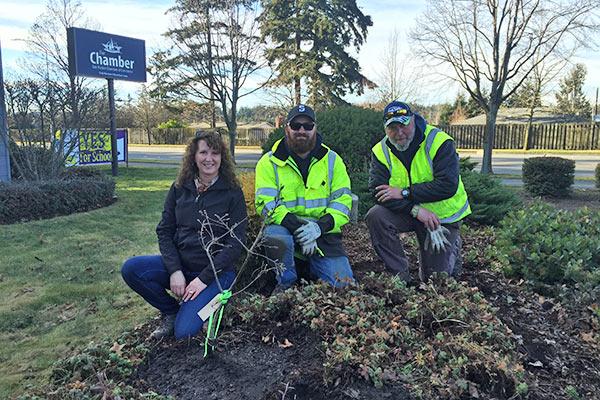 Partnership with the City of Oak Harbor Washington for planting Garry oak trees.