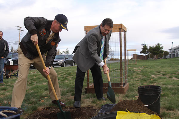 Garry oak planting partnership with the US Navy on Naval Air Station Whidbey Island