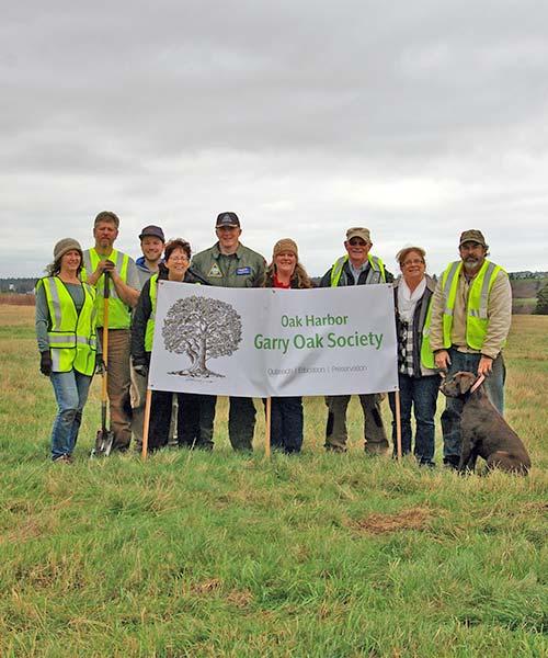 Garry Oak Society planting Garry oaks at NASWI