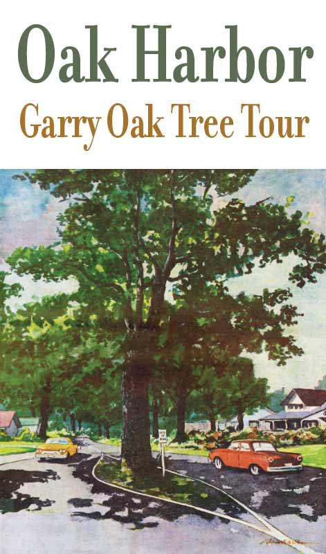 Garry Oak Tree Tour of Oak Harbor, WA