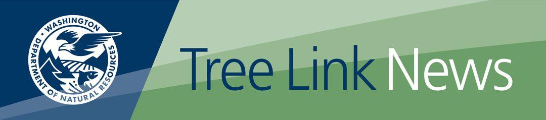 DNR Tree Link News Logo